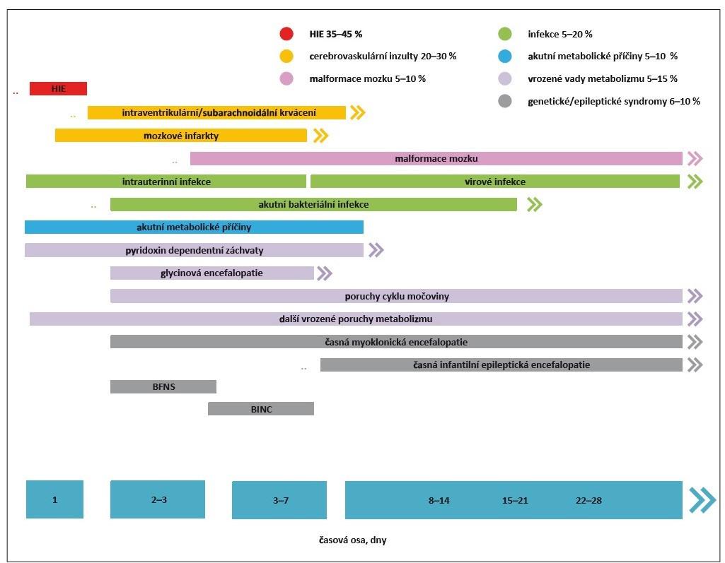 Etiologické faktory rozvoje novorozeneckých záchvatů.<br> BFNS – benigní familiární neonatální záchvaty; BINC – benigní idiopatické neonatální křeče; HIE – hypoxicko-ischemická encefalopatie<br> Fig. 1. Etiological factors of neonatal seizure development.<br> BFNS – benign familial neonatal seizure; BINC – benign idiopathic neonatal convulsions; HIE – hypoxic-ischemic encefalopathy