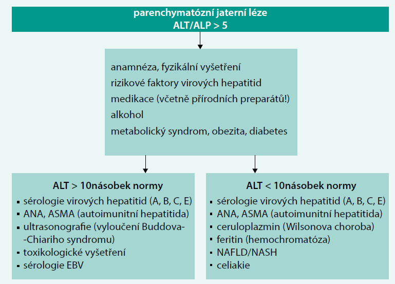 Schéma 2. Přístup k pacientovi s parenchymatózní jaterní lézí. Upraveno podle [4]