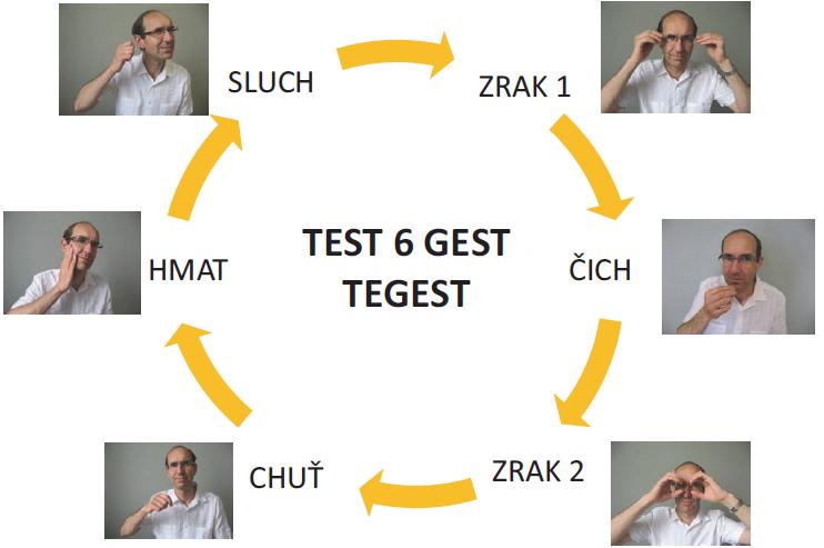 Šest gest symbolizujících lidské smysly k testování krátkodobé paměti testem TEGEST jsou v pořadí, jako by byly uspořádány do kruhu od úst (1. chuť – jíte lžící) přes tvář (2. hmat – hladíte se po tváři), ucho (3. sluch – telefonujete), oči (4. zrak – nasadíte si brýle) k nosu (5. čich – přičichnete ke květině). Nakonec se přidává jedno gesto týkající se znovu zraku (6. díváte se dalekohledem).<br> Fig. 1. Six gestures symbolizing the human senses to examine short-term memory with the TEGEST test are in the order as if they were arranged in a circle from the mouth (1. taste – you are eating with a spoon), followed by the face (2. touch – you stroke your cheek), the ear (3. hearing – you are making a telephone call), the eyes (4. sight – you are putting on your glasses), and up to the nose (5. smell – you are smelling a flower). Finally, one gesture related to sight is added (6. you are looking through a pair of binoculars).