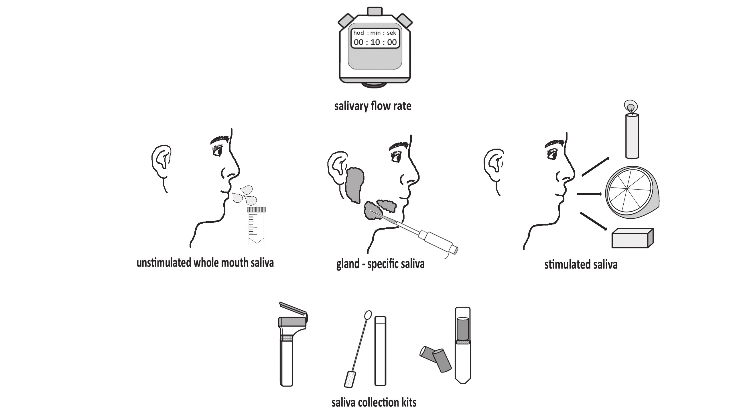 Saliva collecting methods: unstimulated collection, stimulated collection using different stimulants and collection kits.