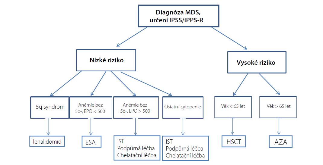 Algoritmus léčby MDS