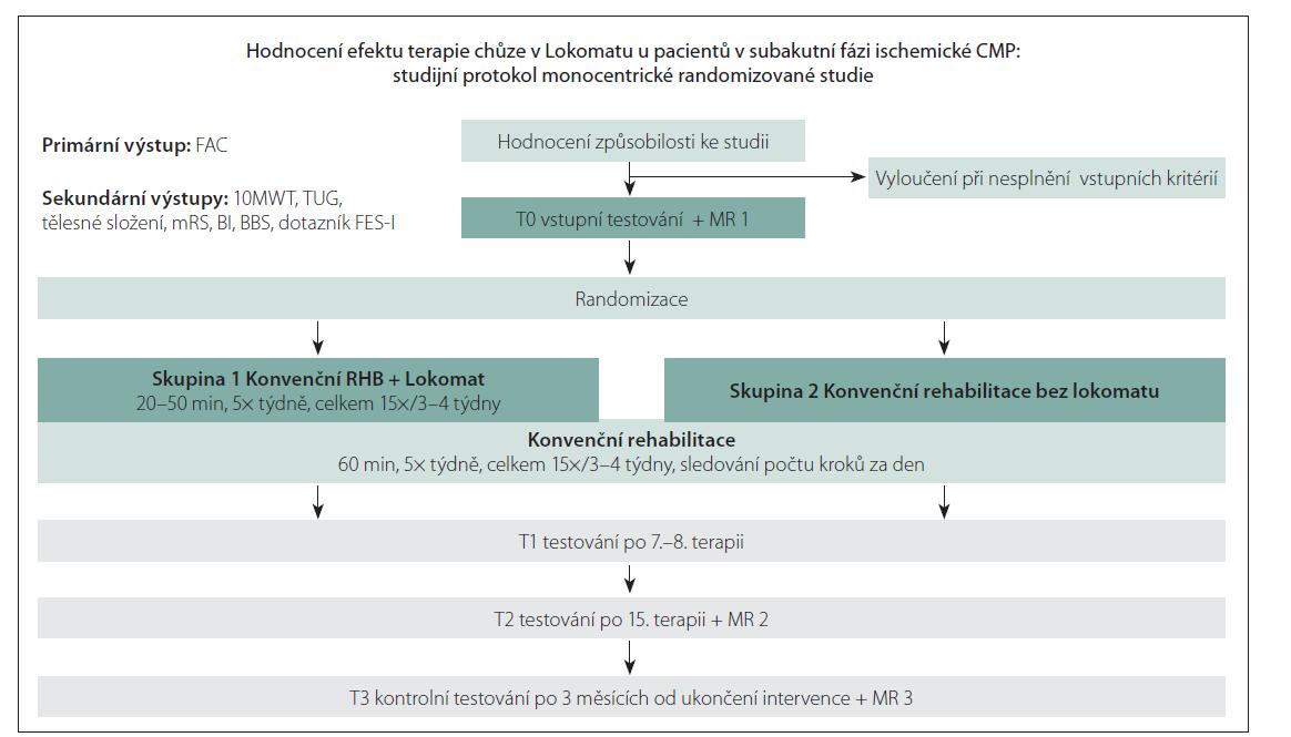 Studijní protokol.<br> 10MWT – 10 Meter Walk Test; BBS – Berg Balance Scale; BI – index Barthelové; FAC – Functional Ambulation Category;<br> FES-I – The Falls Efficacy Scale – International; mRS – modifikovaná Rankinova škála; RHB – rehabilitace; TUG – Timed Up and Go<br> Fig. 1. Study protocol.<br> 10MWT – 10 Meter Walk Test; BBS – Berg Balance Scale; BI – Barthel Index; FAC – Functional Ambulation Category;<br> FES-I – The Falls Efficacy Scale – International; mRS – modified Rankin Scale; RHB – rehabilitation; TUG – Timed Up and Go