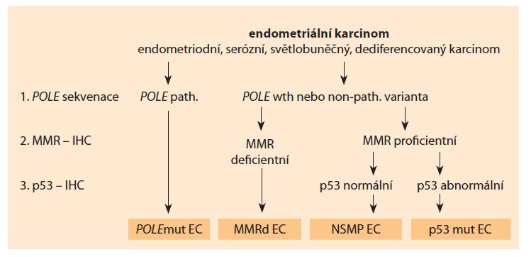 Schéma 1. Schéma užití markerů molekulární klasifikace [14].<br> Scheme 1. Scheme of the use of molecular classification markers [14].