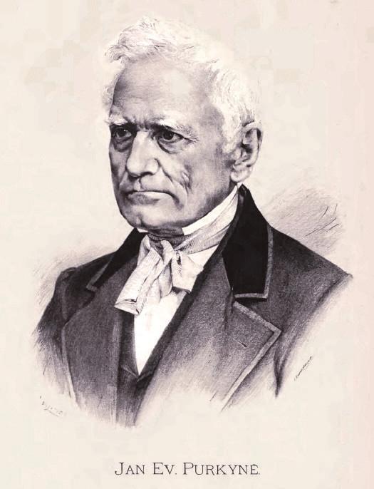 Jan Vilímek: J. E. Purkyně
