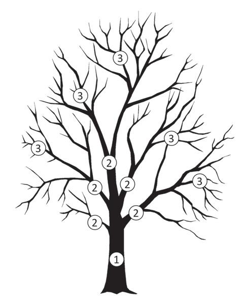 """Trunk-branch"" model nádorové heterogenity."