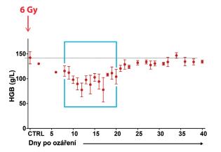 Spontánní regenerace krvetvorby byla analyzována v období mezi 8. a 20. dnem po celotělovém ozáření myší dávkou 6 Gy. Od 12. dne se zastaví rozvoj anémie, což svědčí o obnovené produkci erytrocytů v množství, které se vyrovná a posléze převýší množství erytrocytů zanikajících (délka života erytrocytů je u myší asi 40 dnů). (Faltusová, K. et al. (2020), doi: 10.3389/fcell.2020.00098)