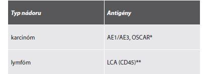 Základný imunohistochemický panel pre odlíšenie karcinómu a lymfómu.