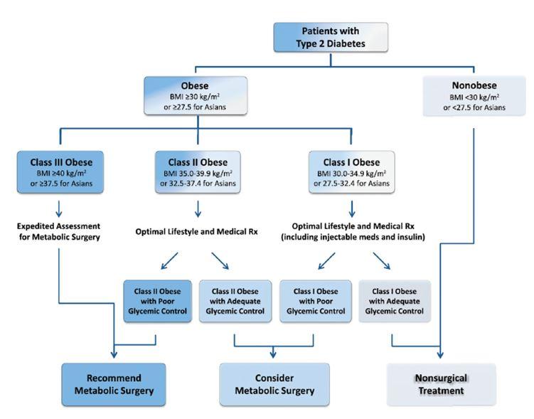 Schema 1: Navrhovaný algoritmus využití metabolické chirurgie v léčbě DM 2. typu. Převzato z [27]<br> Scheme 1: Suggested algorithm for the use of metabolic surgery in the treatment of type 2 diabetes. Taken from [27]