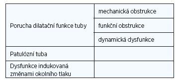 Typy dysfunkce Eustachovy tuby (dle Schildera et al.) (1).