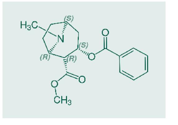 Chemická struktura kokainu. Zdroj: Wikimedia Commons<br> (CC BY 4.0)