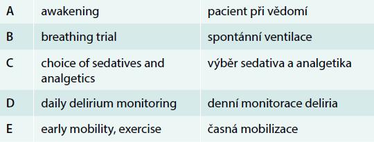 """""""ABCDE"""" přístup k pacientům na JIP s umělou plicní ventilací"""