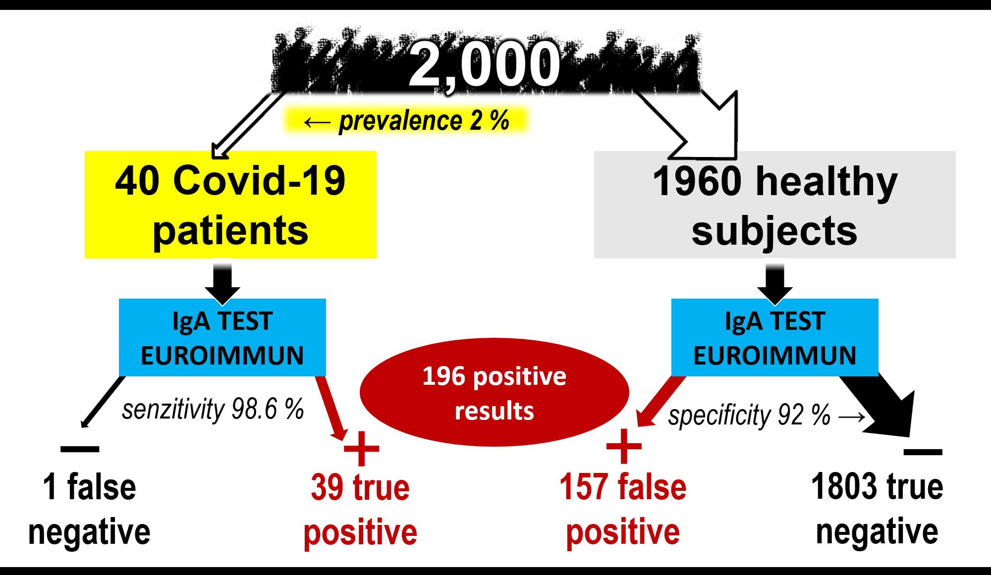 Predikce předpokládaného poměru správně/falešně pozitivních a správně/falešně negativních výsledků. Demonstrováno na souboru 2000 osob s2% prevalencí a definovanou specificitou a senzitivitou souprav. Výpočet byl proveden pro soupravy ELISA Euroimmun IgG (vlevo) a IgA (vpravo). Při vysoké specificitě IgG soupravy převažuje významně počet správně pozitivních výsledků nad falešně pozitivními, vpřípadě nižší specificity testu IgA významně převažuje počet falešně pozitivních osob nad správně pozitivními. Falešná negativita nepředstavuje při nízké prevalenci výrazný problém. (Ilustrace: H. Šimková)