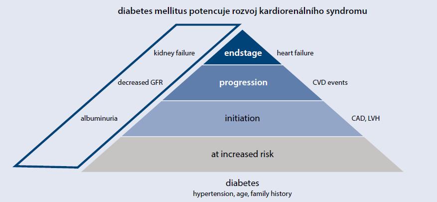 Schéma 1 | Diabetes mellitus potencuje rozvoj kardiorenálního syndromu. Upraveno podle [13]