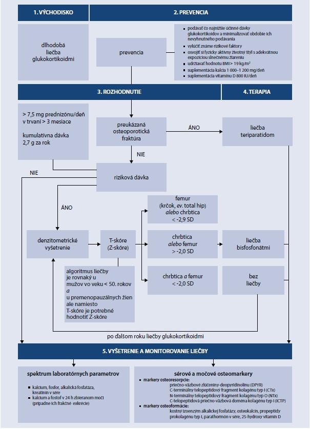Schéma. Odborné usmernenie MZ SR pre diagnostiku a liečbu osteoporózy indukovanej glukokortikoidmi. Upravené podľa [18]