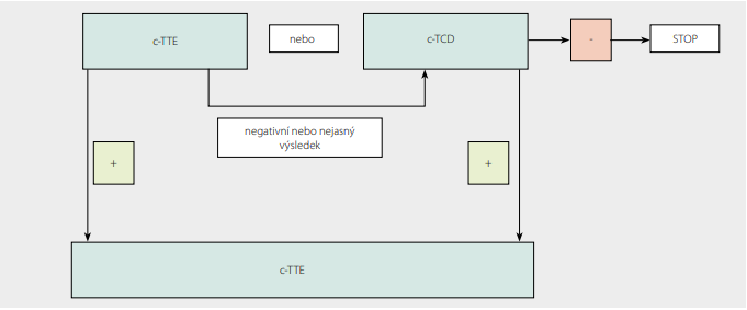 Schéma 1. Algoritmus pro diagnostiku PFO (upraveno dle 11)