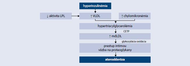 Patogenéza diabetickej dyslipidémie. Upravené podľa [12]