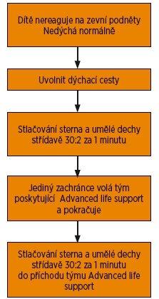 Schéma 1. Basic life support u dětí 2018.