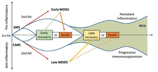Časová souvislost SIRS a CARS a možný rozvoj PICS. SIRS: systemic inflammatory response syndrome (syndrom systémové zánětlivé reakce); CARS: compensatory antiinflammatory response syndrome (syndrom kompenzatorní protizánětlivé reakce); PICS: persistent inflammation, immunosuppression, and catabolism syndrome (syndrom perzistujícího zánětu, imunosuprese a katabolismu); MODS: multiple organ dysfunction syndrome (syndrom multiogránové dysfunkce). Převzato z Gentile, L.F. et al. Persistent inflammation and immunosuppression: a common syndrome and new horizon for surgical intensive care. J. Trauma Acute Care Surg. 2012