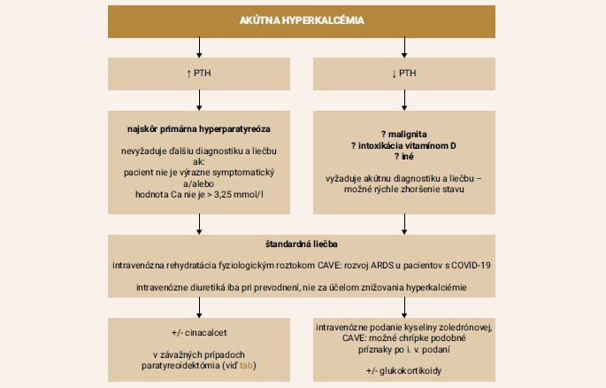Schéma | Manažment akútnej hyperkalciémie počas pandémie COVID-19. Upravené podľa [19]