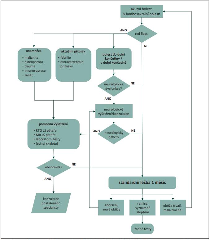 Diagnosticko-terapeutický algoritmus akutních bolestí zad v lumbosakrální (LS) oblasti (převzato a upraveno z [15]). O indikaci pomocných vyšetření (MR, elektrofyziologická vyšetření) optimálně rozhoduje specialista (neurolog, neurochirurg, ortoped). Důvodem pro urgentní konzultaci jsou příznaky dysfunkce kaudy (sfi nkterové obtíže, perianogenitální porucha citlivosti, bolesti a paréza obou dolních končetin). <br> Fig. 1. Diagnostic-therapeutic acute low back pain algorithm fl owchart (adjusted according to [15]). Auxiliary examinations (MRI, electrophysiological examinations) are up to specialist (neurologist, neurosurgeon, orthopedics) indication. Cauda equina dysfunction symptomps (sphincter dysfunction, perianogenital hypoesthesia, bilateral lower extremity pain and paresis) is a matter of urgent consultation.