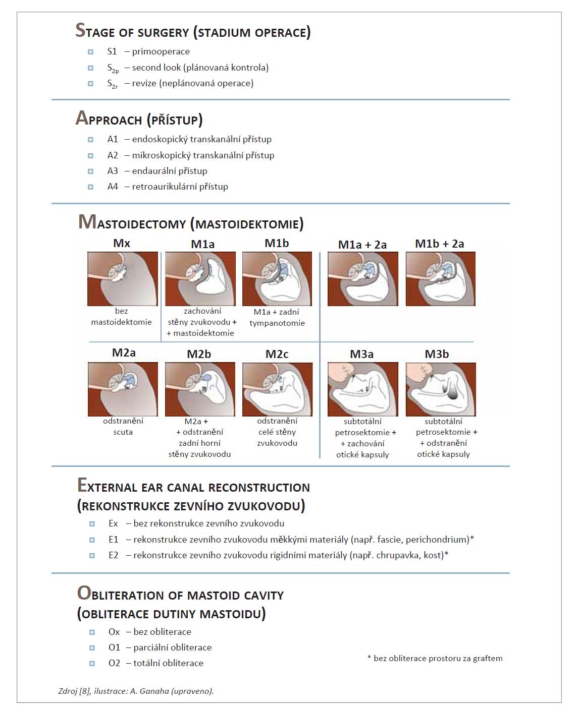 SAMEO klasifikace.<br> Tab. 1. SAMEO classification.