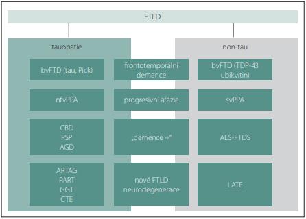 Současná klasifi kace FTLD (vlevo tauopatie, vpravo tau negativní formy; klinické  formy jsou horizontálně seskupeny) upraveno dle [7].<br> Fig. 1. Current classifi cation of FTLD (tauopathies left, tau negative forms right; clinical  forms are grouped horizontally (modifi ed from [7]).