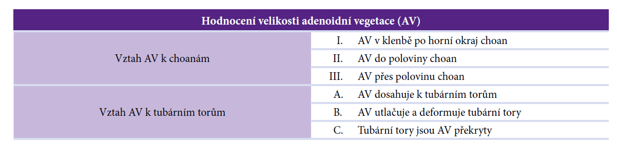 Hodnocení velikosti AV (dle Sychry)