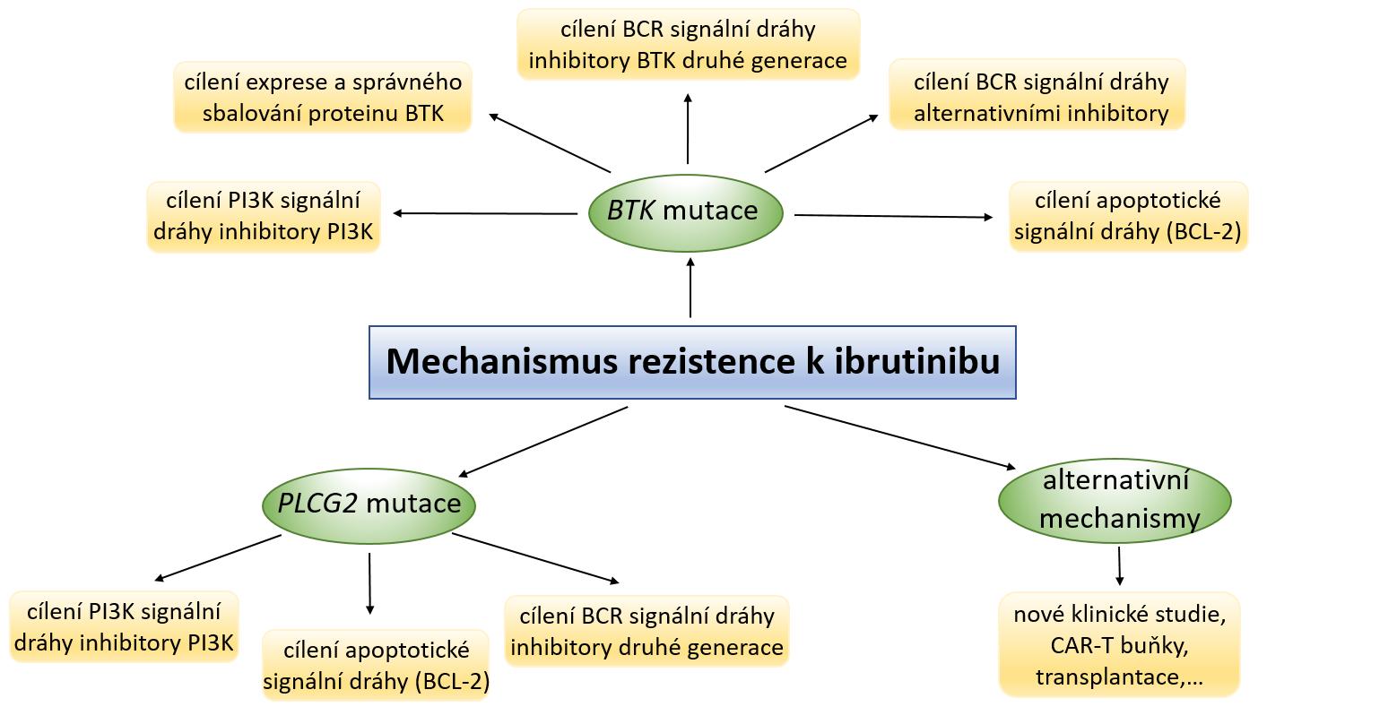 Mechanizmy rezistence vůči ibrutinibu a strategie jejího potenciálního překonání; adaptováno z [45].