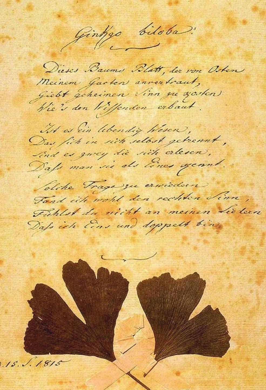 Goethův rukopis básně Gingo biloba