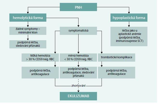Schéma 3. Současná léčebná doporučení u PNH