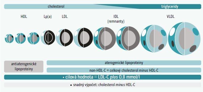 Schéma 3 | Non-HDL cholesterol: význam u odhadu reziduálního kardiovaskulárního rizika