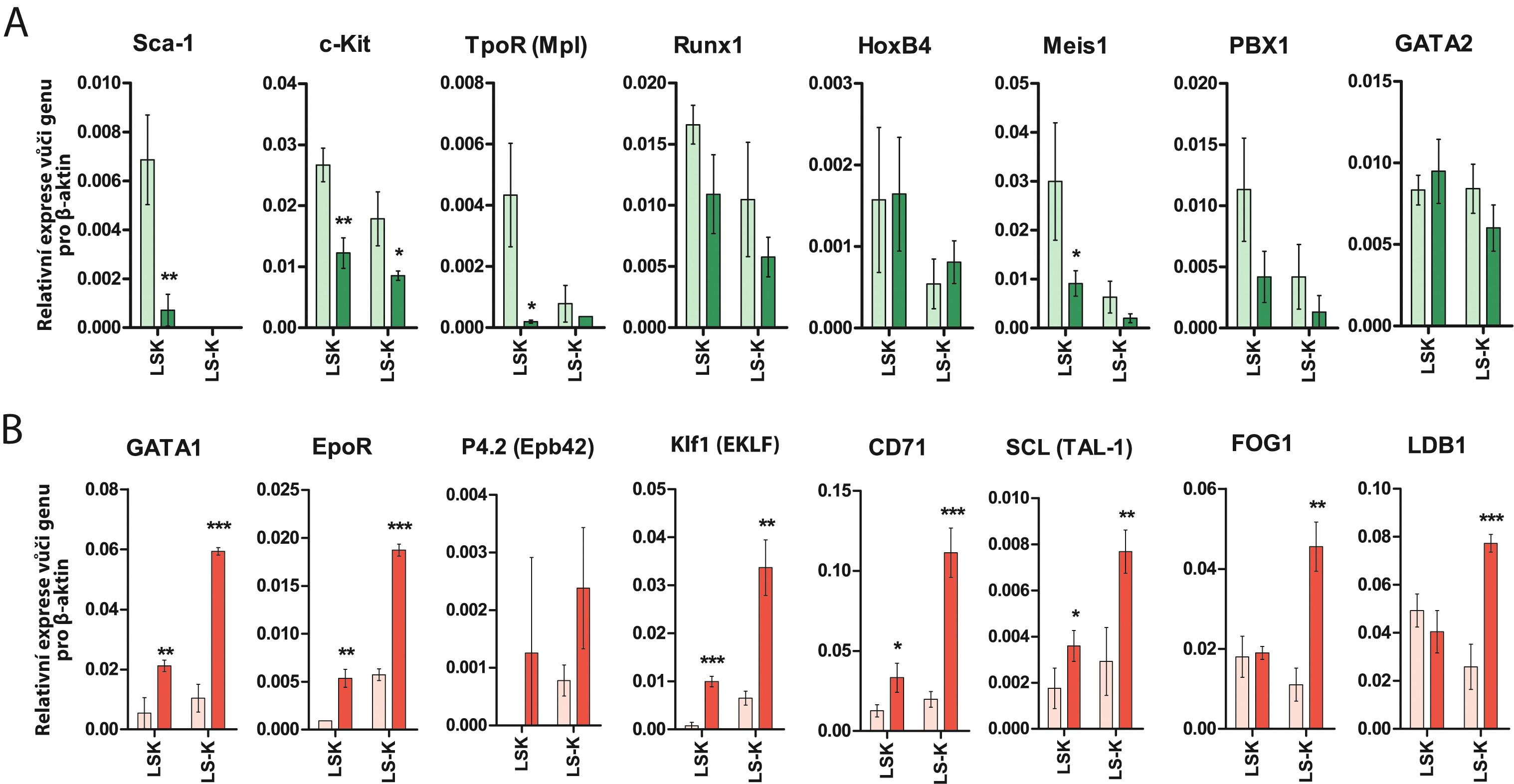 """(A) Exprese genů spojených s """"kmenovou funkcí"""" krvetvorných buněk je v LK-R buňkách snížená nebo nezměněná. (B) Exprese genů spojených s erytroidním vývojovým potenciálem je v LK-R buňkách významně zvýšená jak v jejich LS– K, tak i LSK frakci. *, **, *** udávají významný rozdíl (p < 0,05, p < 0,01, p < 0,001) oproti expresi příslušného genu v LS– K nebo LSK buňkách v normální kostní dřeni."""