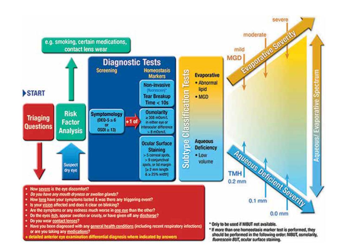 Doporučený diagnostický přístup DED [2]