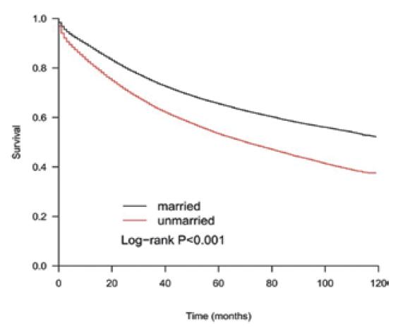 Kaplan-Meierova křivka přežití pacientů s kolorektálním karcinomem v závislosti na rodinném stavu<br> Graph 1. The Kaplan-Meier curve shows the dependence of overall survival of colorectal cancer patients on marital status