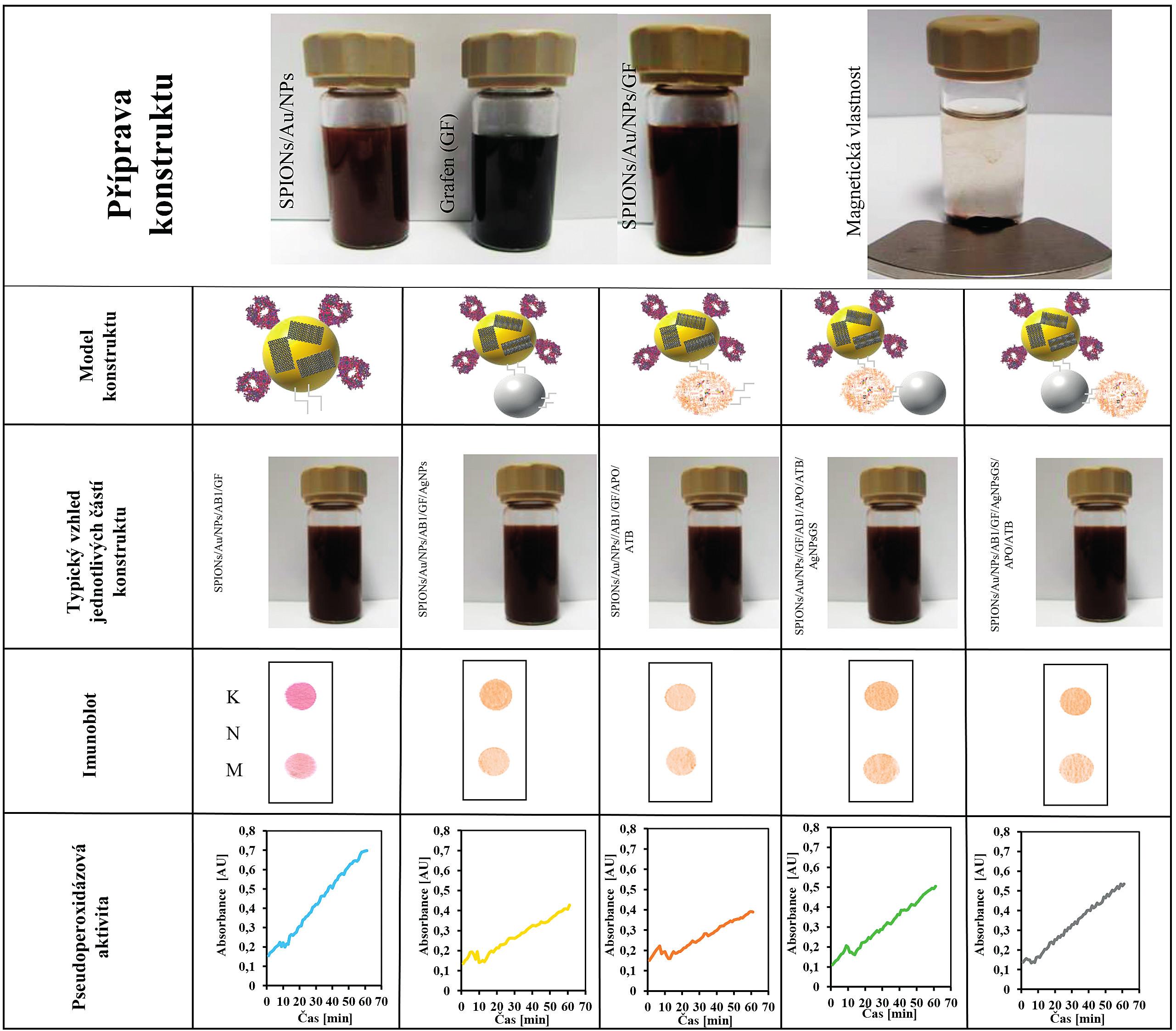 Shrnutí přípravy a vlastností jednotlivých části komplexního nanokonstruktu<br> Řádek 1: Příprava nanokonstruktu s magnetickými vlastnosti. SPION nanočástice pokryté zlatem jako výchozí část nanokonstruktu. Typická fotografie disperze nanočástic SPIONs/Au/NPs; grafenu (GF) a SPIONs/Au/NPs/GF; Fotografie po interakci s magnetem po 20 s SPIONs/Au/NPs.<br> Řádek 2: Ukazuje jednotlivé části a modely nanokonstruktu, které byly testovány.<br> Řádek 3: Typický vzhled jednotlivých připravených typů konstruktu.<br> Řádek 4: Typické dot blot analýzy jednotlivých testovaných nanokonstruktů: K – kontrola, M – testovaný nanokonstrukt, N – negativní kontrola.<br> Řádek 5: Typické časové průběhy pseudoperoxidázové reakce pro jednotlivé testované nanokonstrukty.
