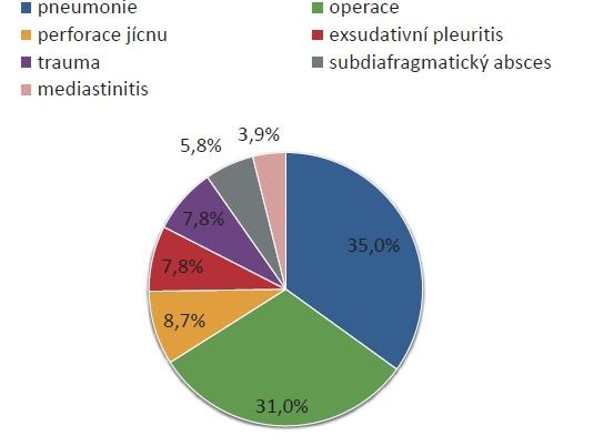 Příčiny vzniku emypému<br> Graph 1: Causes of empyema