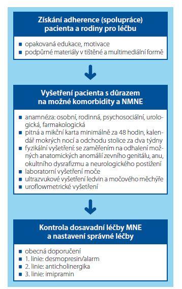 Tři základní kroky v diagnostice a léčbě rezistentního nočního pomočování<br> Fig. 1. Three basic steps in the diagnosis and treatment of resistant enuresis