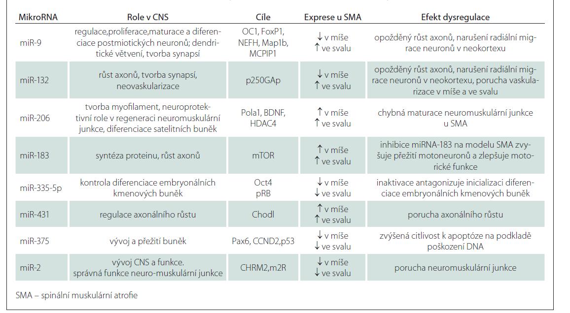Kandidátní miRNA jako potenciální biomarkery, terapeutické cíle a etiologické faktory v patogenezi SMA [3].