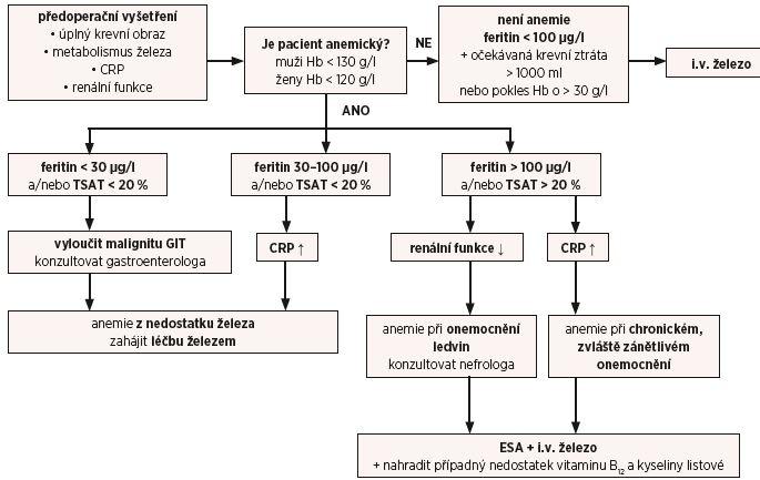 Schéma 1 Algoritmus diagnostiky a léčby předoperační anemie