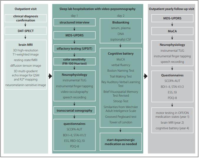 Protocol of the BIO-PD study.<br> Obr. 1. Protokol studie BIO-PD.