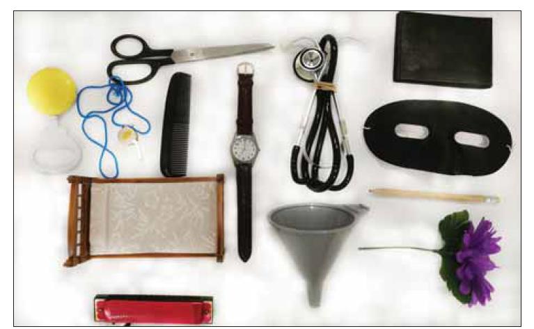 """Fig. 1. Twelve items for the """"Naming task"""" (flower, bed, whistle, pencil, rattle, mask, scissors, comb, wallet, harmonica, stethoscope, funnel).<br> Obr. 1. Dvanáct předmětů pro subtest """"Pojmenování"""" (květina, postel, píšťalka, tužka, chrastítko, maska, nůžky, hřeben, peněženka, harmonika, stetoskop, trychtýř)."""