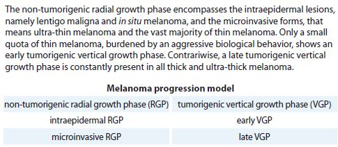 Melanoma progression model.