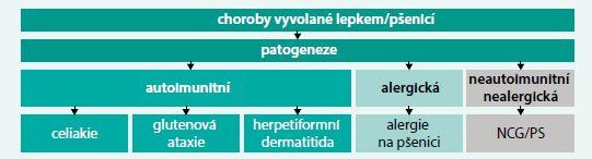 Schéma. Rozdělení chorob vyvolaných lepkem/pšenicí podle patogeneze. Upraveno podle [2]