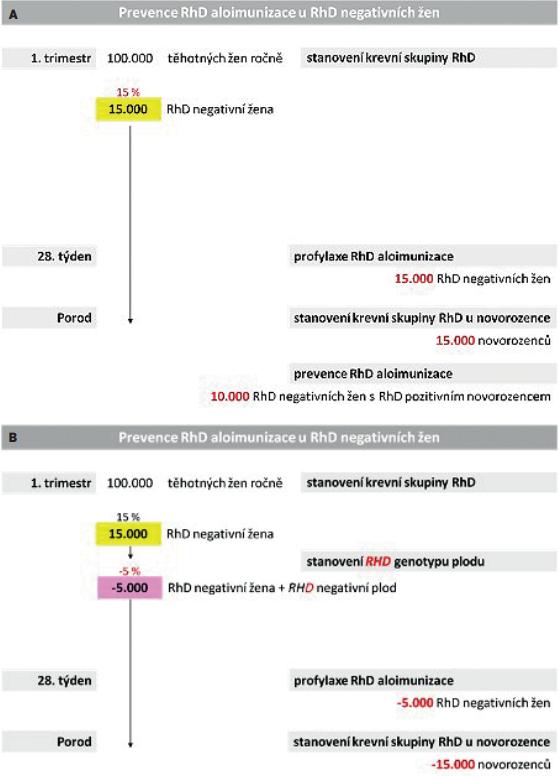 Schéma 2 Prevence RhD aloimunizace u RhD negativních žen při nejčastějších potenciálně senzibilizujících událostech v České republice