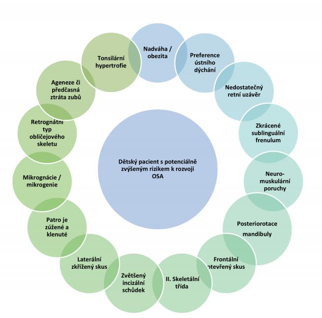 Souhrn faktorů objevujících se často u dětí trpících OSA<br> Fig. 1 Summary of factors often occurring in children suffering from OSA