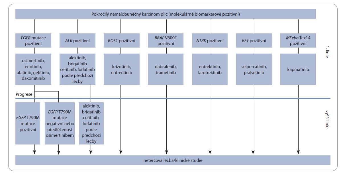 Schéma 1. Evoluce armamentaria terčové léčby.