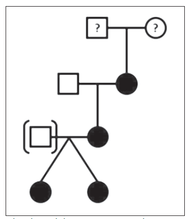 Obr. 1b. Rodokmen: otec (III.1) adoptován, u praprarodičů (I.1 a I.2) není znám fenotyp (přítomnost skvrn café-au-lait).<br> Fig. 1b. Family tree: father (III.1) adopted, the phenotype (presence of café-au-lait macules) of great-grandparents (I.1 and I.2) is not known.