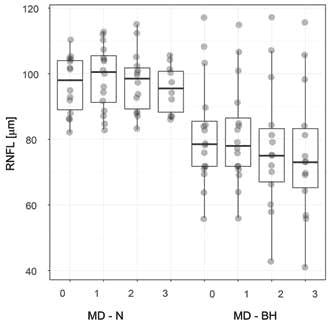 Tloušťka vrstvy peripapilární RNFL u pacientů s, resp. bez bitemporální hemianopie. Charakteristiky zobrazení boxplot-u odpovídají obrázku 3. Zkratky: RNFL – vrstva nervových vláken, MD - N, resp. - BH – mean deviation zorného pole u pacientů s, resp. bez, bitemporální hemianopie, 0 – předoperační vyšetření, 1, 2, resp. 3 – první, druhá, resp. třetí pooperační kontrola