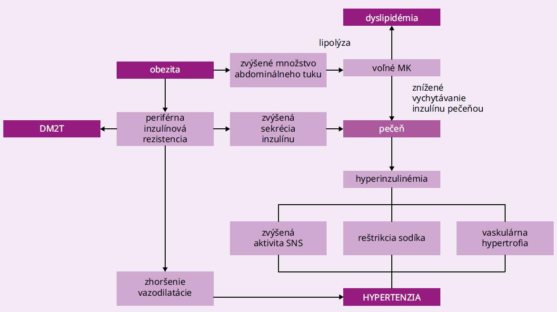 Schéma. Mechanizmus pôsobenia obezity na zvýšenie krvného tlaku
