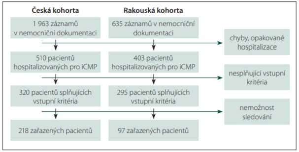 Schéma utváření pacientského souboru.<br> Fig. 1. Patient population identification.